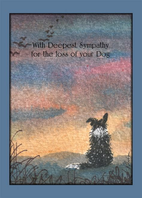 loss of montyandrosie four assorted sympathy for loss of dog and cat cards including