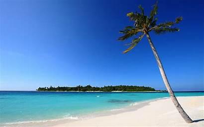 Beach Sand Palm Desktop 4k Wallpapers