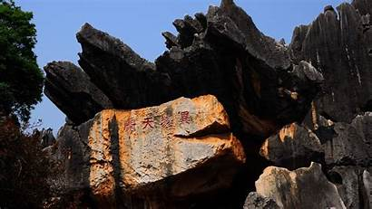 Yunnan Forest Stone 1080 1920 Khitan Wolf