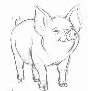 charlottes web sketches | Pig by ~lonelyangelsansa on ...