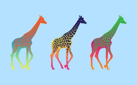 what color are giraffes swahiliartseducation cultural educational inspiring