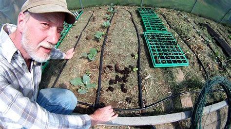 automatische bewässerung gewächshaus selber bauen bew 228 sserungsanlage selber bauen bew sserungsanlage f r pflanzen selber bauen mister greens welt