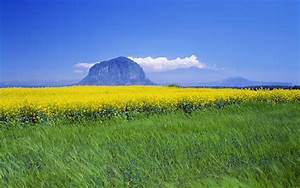 South Korea landscape