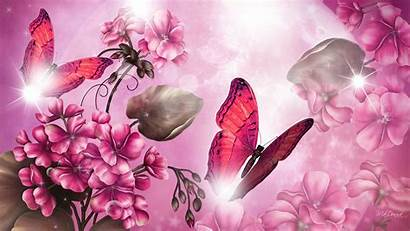 Pink Butterfly Wallpapers Bright Desktop Girly 3d