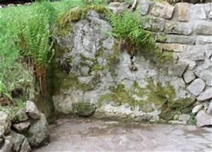 Bilder Von Steingärten : steing rten bilder fotos bepflanzung anlegen gestalten ~ Indierocktalk.com Haus und Dekorationen