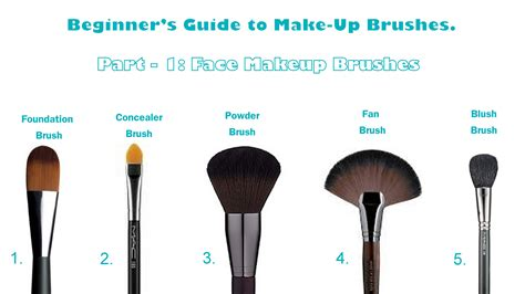 Make Up Brushes For The Beginner's Guidance About