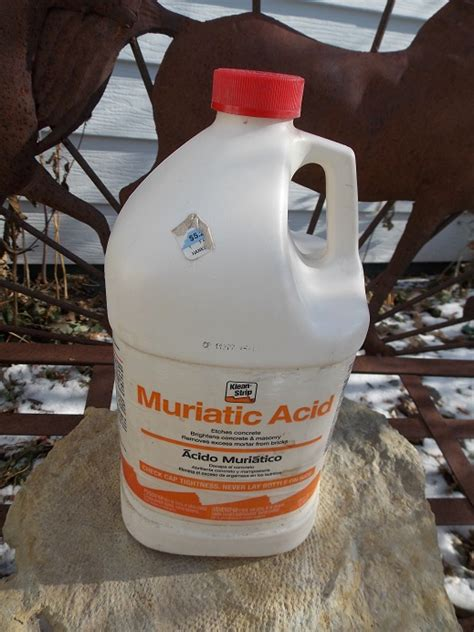 cleaning concrete patio with muriatic acid prepping fossils with acid bluff country fossils