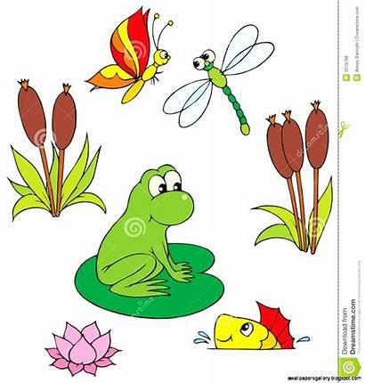 Clipart Clip Pond Vector Animals Organism Ecosystem