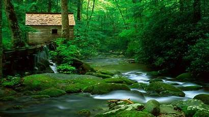 Forest Nature Wallpapers Watermill Desktop Rivers 1280