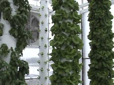 aquaponics system   retractable roof production system