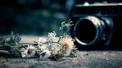 Camera Background Flower Flowers Wallpapers Widescreen Still