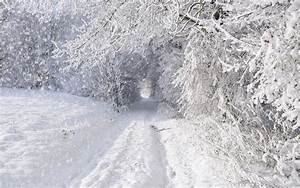 Snow Storm Wallpapers - Wallpaper Cave