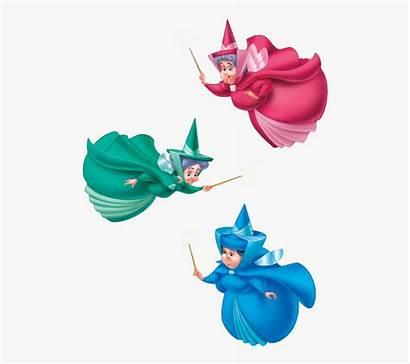 Fairy Aurora Godmother Princesa Fadas Da Transparent