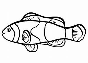 Gambar Mewarnai Ikan Nemo