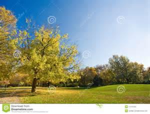 Most Beautiful Fall Scenery