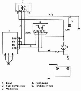 Suzuki Samurai Fuel Pump Relay Wiring Diagram
