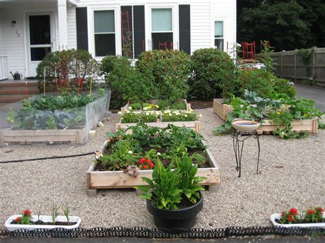 grass for vegetable gardens 38 homes that turned their front lawns into beautiful