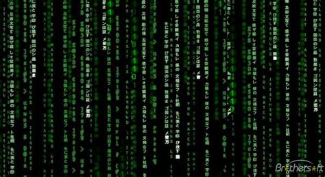 Animated Matrix Wallpaper - animated matrix wallpaper