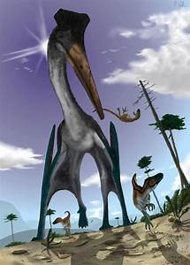 Absurd Creature of the Week: The 16-Foot-Tall Reptilian ...  Quetzalcoatlus