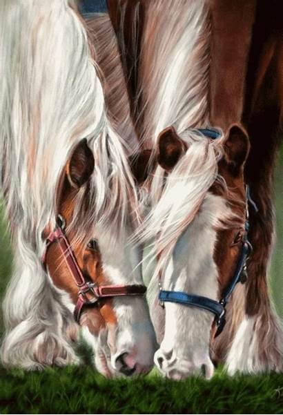 Horse Paintings Cheval Horses Pastel Trait Dessin