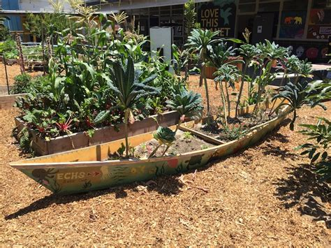 Garden School by From School Gardens To Living Learnscapes Resilient