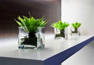 Stunning Office Desk Plants Furniture - X Office Design