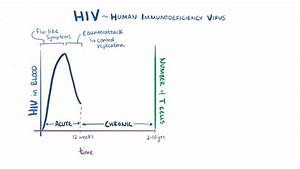 Human Immunodeficiency Virus  Hiv  Infection
