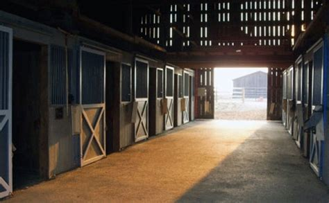 nature picture selection horse stables