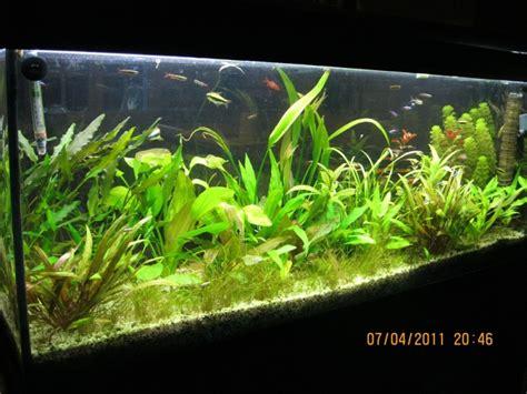 vend aquarium 120 litres complet 45 loiret
