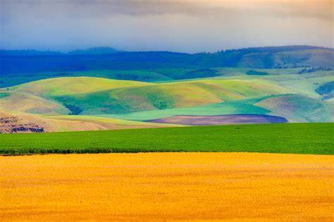 The Palouse Hills of Eastern Washington   William Horton ...