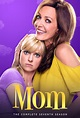 Mom - Aired Order - Season 7 - TheTVDB.com