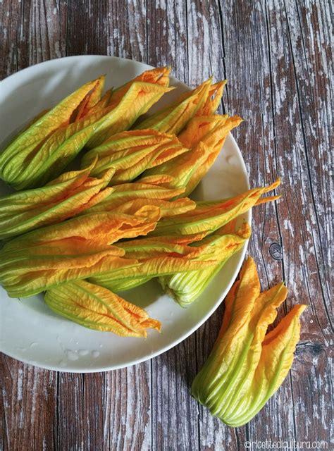 come si preparano i fiori di zucca fritti fiori di zucca ripieni ricette di cultura