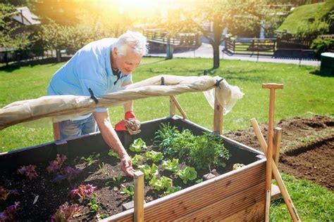 Ein Hochbeet Im Garten Anlegen  Tipps Für Hobbygärtner