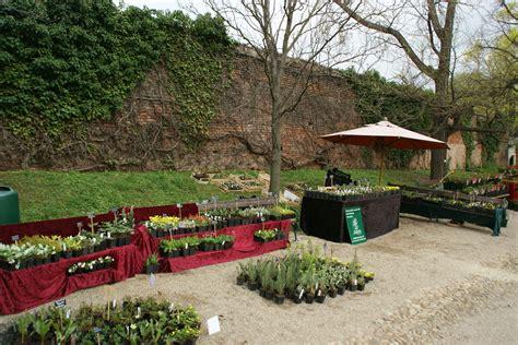 Botanischer Garten Wien Pflanzenverkauf by Wiener Rarit 228 Tenb 246 Rse Im Botanischen Garten Sarastro Stauden