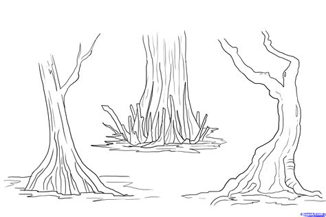 Swamp Clipart Black And White