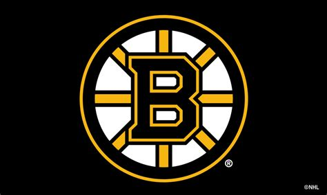 Boston Bruins Logo Wallpaper National Hockey League Flags Nhl Flags And Banners Hockey Flags