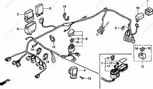 1998 Honda Civic Distributor Wiring Diagram