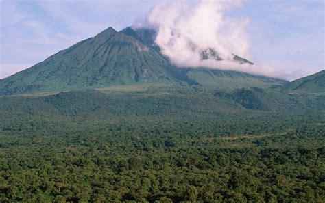 NASA survey technique estimates Congo forest's carbon