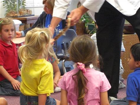 northside christian pre school creation critters 777 | The Sand Boa is shedding.