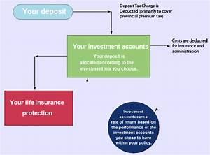 Universal Life Insurance