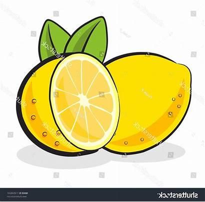 Lemon Clipart Clip Printable Cdr Vector Graphics