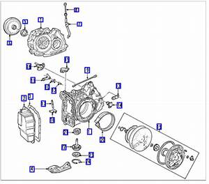 Diagram  2003 Ford Escape Transmission Wiring Diagram