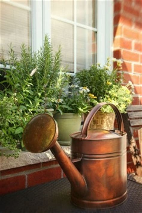 Window Seal Pots by How To Make A Windowsill Herb Garden Grow Culinary Herbs
