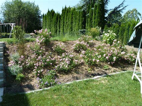 Böschung Im Garten Gestalten  Seite 1 Gartengestaltung