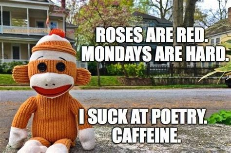 When you realized monday has 24hours in it. Pin by Sonja D. on Sayings | Monday humor, Monday coffee, Funny