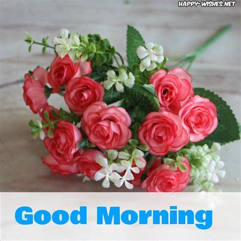 good morning wishes  small red rose pictures good