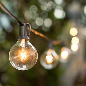 2, Pcs, Patio, U0026, Bistro, Lights, Globe, String, Lights, 2, In, Bulbs, 50, Ft, Black, Wire, Outdoor, Clear