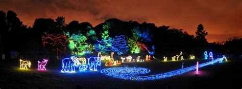 holiday zoo lights roundup drive the nation