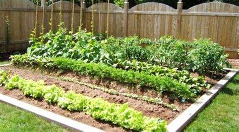 Planning A Beginners Vegetable Garden