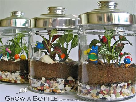 cool  creative terrarium ideas